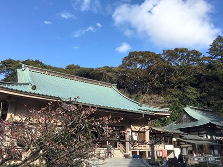 IMG_2494 blog.jpg